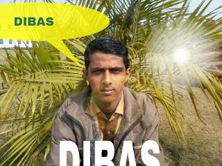 dibas750