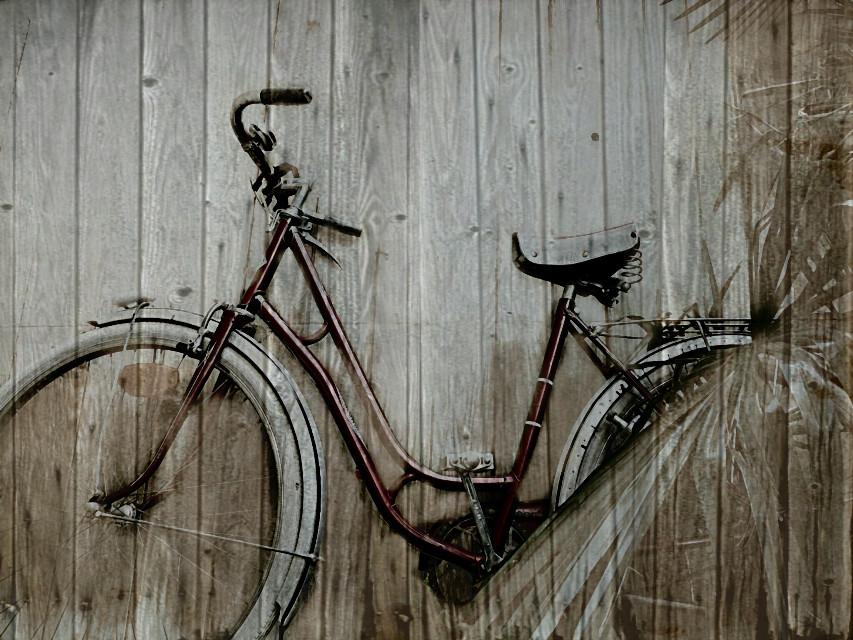 camouflage #bike #old #vintage #bicycle