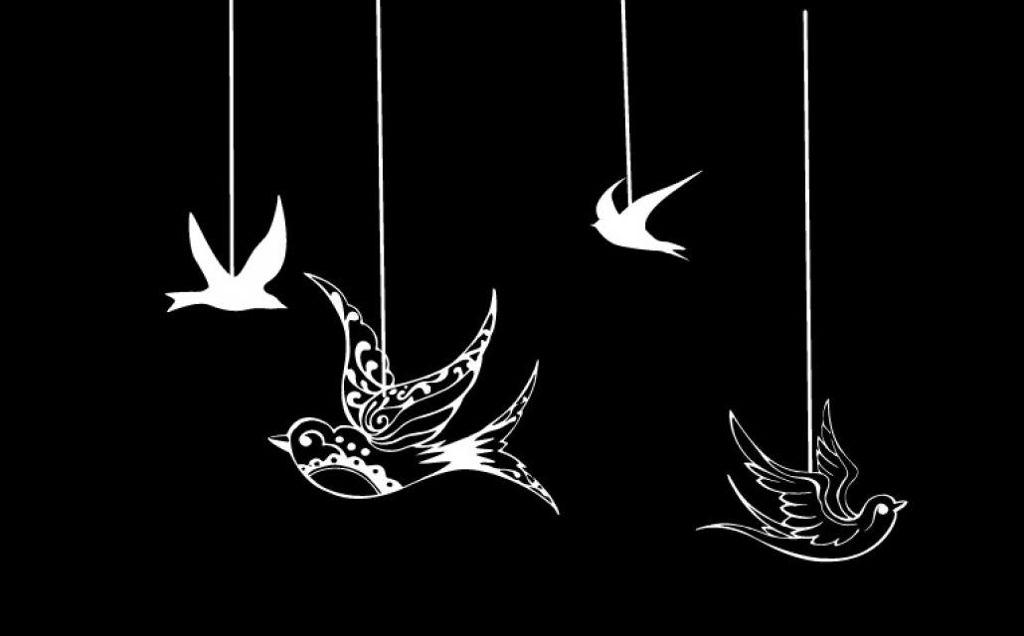 Birds Overlay Image By Alyssa Arnett